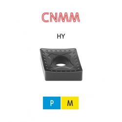 CNMM 1906